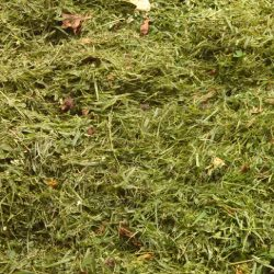 grass clipping mulch