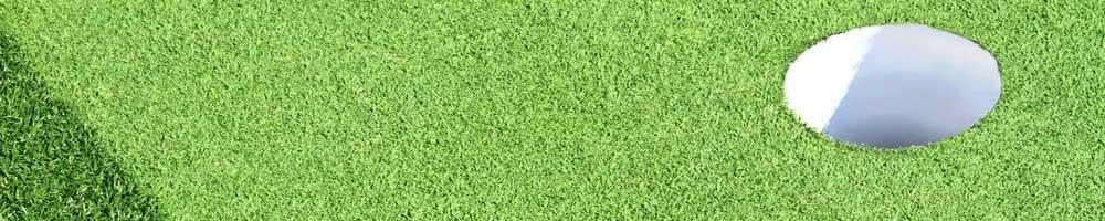 artificial grass putting green cost