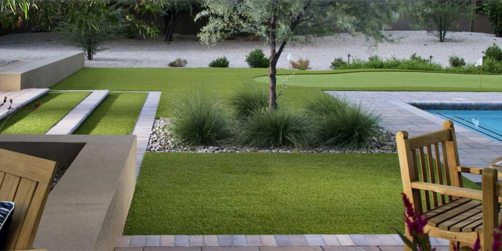Xeriscape Ideas Easy Inexpensive Modern Tropical And Dog Friendly
